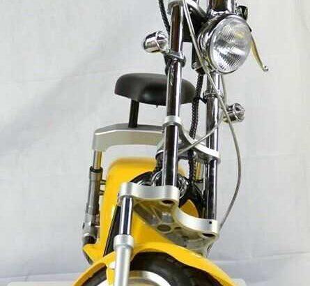 Economy Friendly 3000W Citycoco Electric Scooter