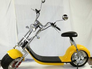 Economy friendly Citycoco 3000W electric scooter Big Wheel